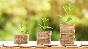 rentownosc-kapitalu-wlasnego-roe