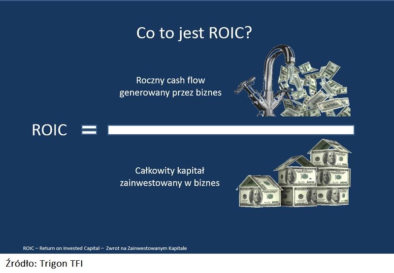 analiza-rentownosci-roic